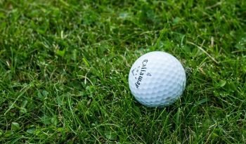 Why are Golf Balls White?